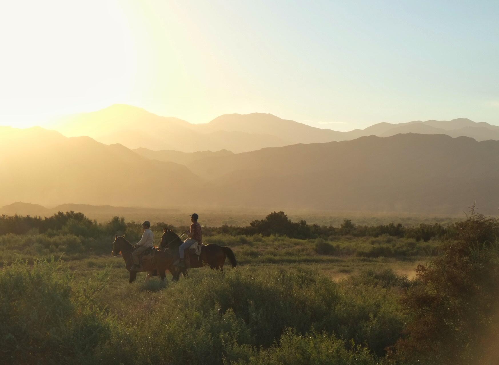 Gauchos reiten in den Sonnenuntergang Argentinien