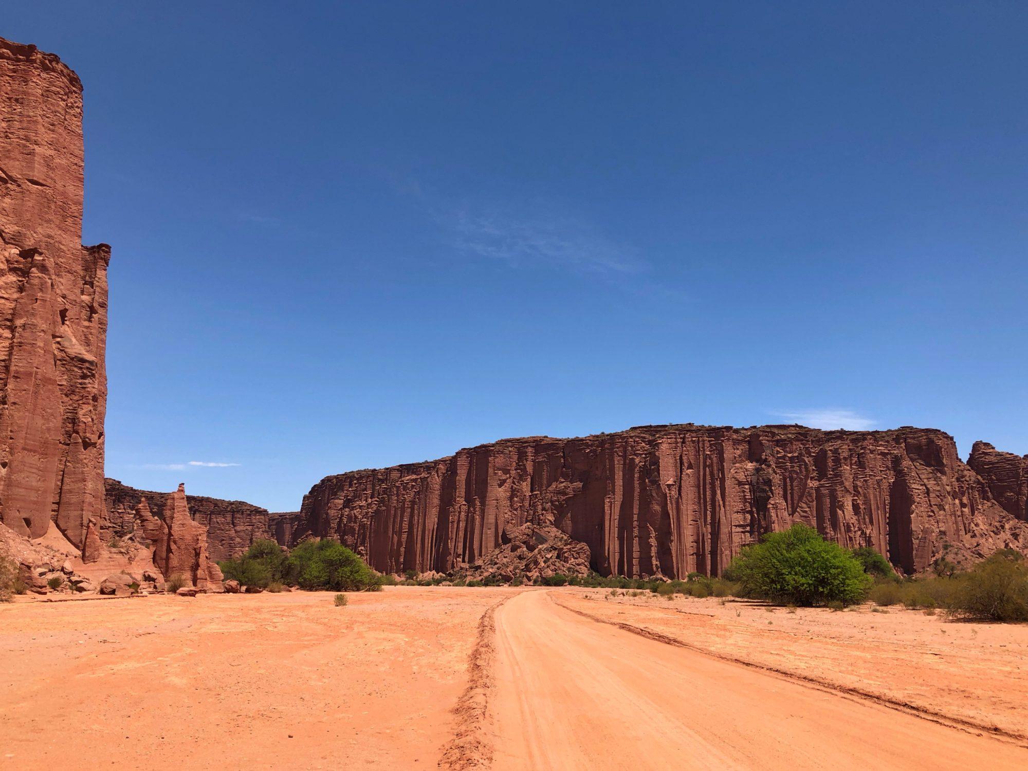 Dromedar - Nationalpark Talampaya Argentinien
