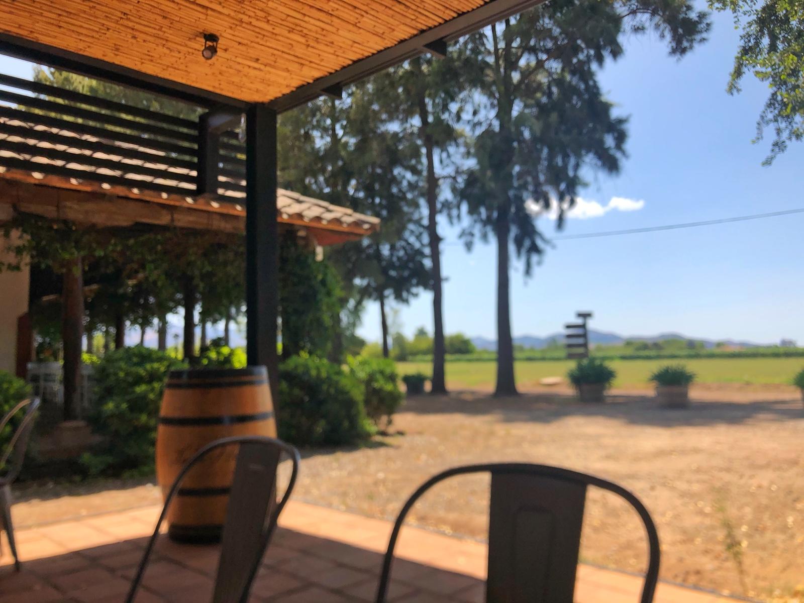Blick von der Lounge ins Weingut
